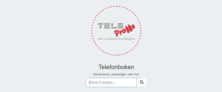 TeleProffs GO - Sök API Example